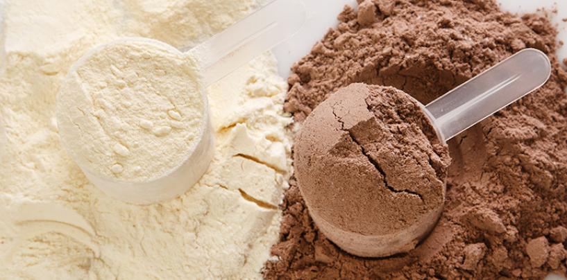Odżywki białkowe – trochę teorii